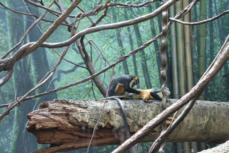 bronx zoo may 27 2013 and last day city job 113